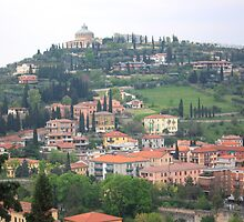 View of Verona City by Indrani Ghose