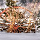 Wagon in Snow by Debbie  Roberts