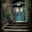Green Door by Citizen