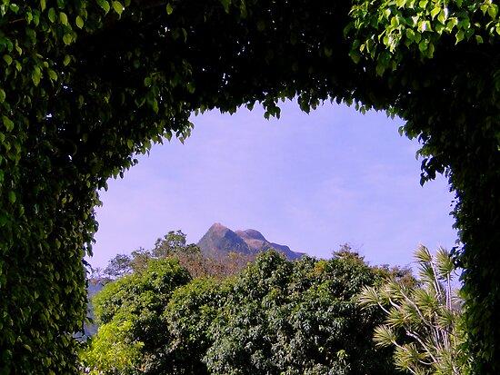 Lushness Of El Valle, Panama IV by Al Bourassa
