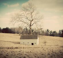 Old Farm House by Theresa Furey Photography