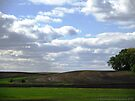 Countryside Landscape by Barberelli