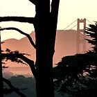 Presidio Dusk by Stuart Green