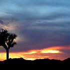 Sunset at Joshua by Cleber Photography Design