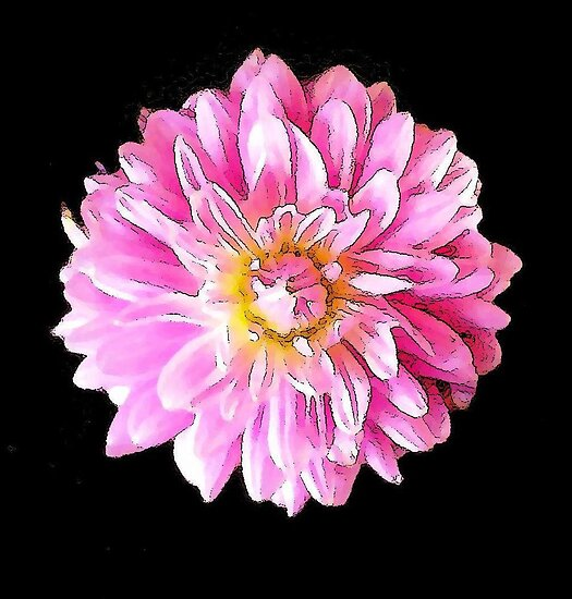 Pink Passion by Caroline  Lembke
