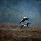 Black-necked cranes with texture by Katariina Jarvinen