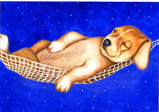 Sleeping under the stars 763 views by Margaret Sanderson