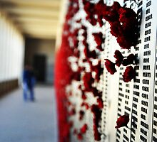 Wall of Honour, Australian War Memorial. by lu138