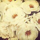 Momma's Roses by Jonicool