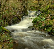 The Beck at High Dam by VoluntaryRanger