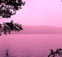 Windermere in Pink by Ladymoose
