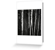 scarred bamboo Greeting Card