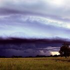 Northern Rivers Shelf Cloud by SouthBrisStorms