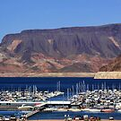 Lake Mead Marina by Tammy Espino