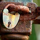 Locked forever by Julie Sleeman