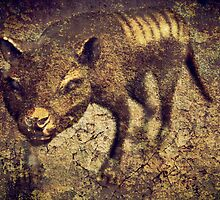 The Last Tasmanian TIger by Sim Baker