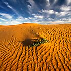 Dune in morning light - perry sand dunes by Hans Kawitzki