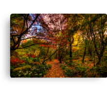Autumn Leaves - Mount Wilson, Blue Mountains - The HDR Experience Canvas Print