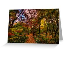 Autumn Leaves - Mount Wilson, Blue Mountains - The HDR Experience Greeting Card