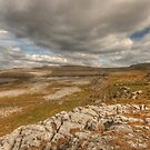 Scenic Burren Landscape by John Quinn