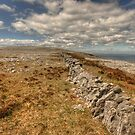 Burren limestone landscape by John Quinn