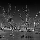 Botany Bay Mystery by JHRphotoART