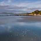 Beach East Coast Tasmania by Priceless