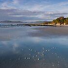 Beach East Coast Tasmania by Priceless