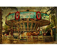 The Old Animal Carousel Photographic Print