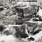 Glencree  by Finbarr Reilly