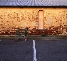 feral trolley by Tony Kearney