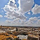 The Castle of Aleppo  by Tarek Solh