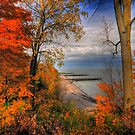 Lake Erie In Autumn by Ron Waldrop