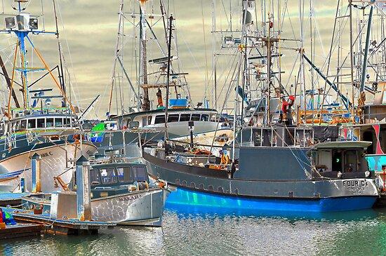 The Marina by Bob Hortman