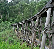 Puffing Billy Bridge, Selby by breewood