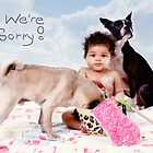 We're sorry we made a mess by susan stone