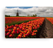 The Colour of Spring Canvas Print
