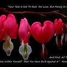 Bleeding Heart by pixelquotes