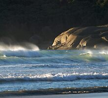 Seascape at Squeaky Beach, Wilsons Promontory by johnrf