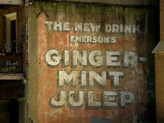 Ginger-Mint Julep by artisandelimage