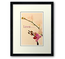 Orchid Love/Amour Framed Print