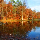 Fall Lake by rtishner1