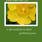 Kindness Yellow Flower on Green, Thank You by SandraRose