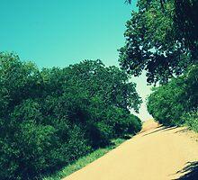 Vintage Road by Brandi Lea