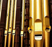 Tabernacle Organ Pipes by Dana Roper
