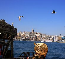 Galata Tower by muharremz