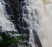 Dip Falls by michellerena