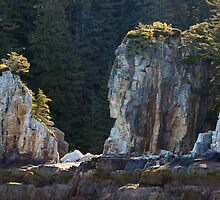 Indian Head Rock by EagleHunter