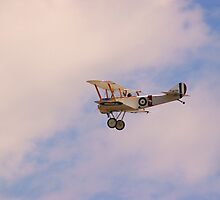 Sopwith Pup by Peter Hall