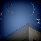 night lover  by S .